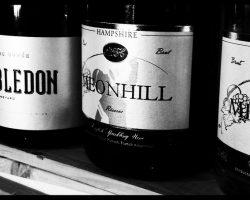 English-Sparkling-Wine-Day-2015-at-Fareham-Wine-Cellar-6