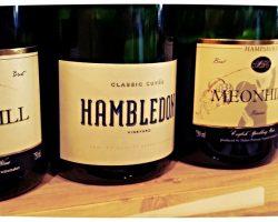 English-Sparkling-Wine-Day-2015-at-Fareham-Wine-Cellar-7