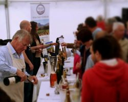 Vineyards-of-Hampshire-Wine-Festival-at-Hambledon-Vineyard-29